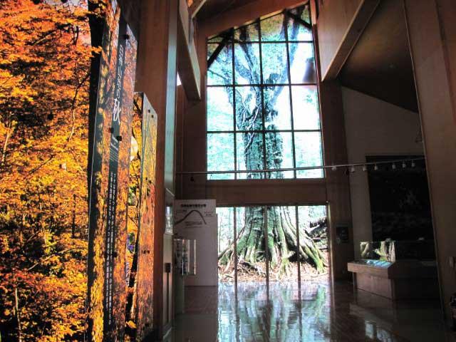 白神山地世界遺産センター「藤里館」