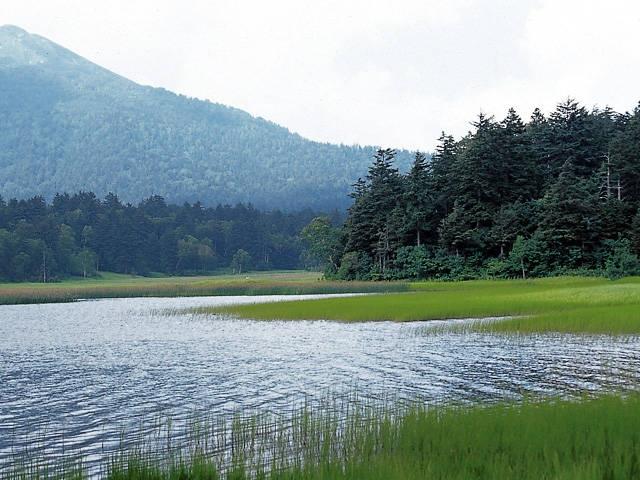 尾瀬沼(群馬県)