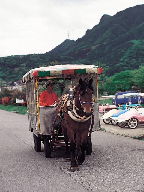 榛名湖畔トテ馬車