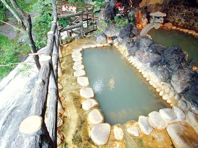 赤城温泉 花の宿 湯之沢館(日帰り入浴)