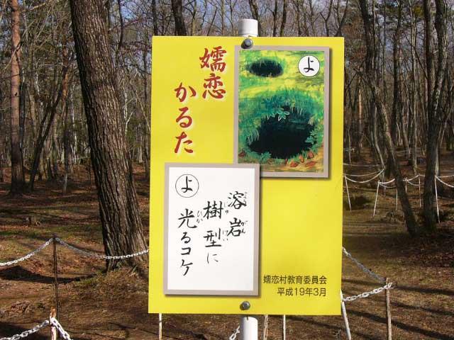 浅間山溶岩樹型