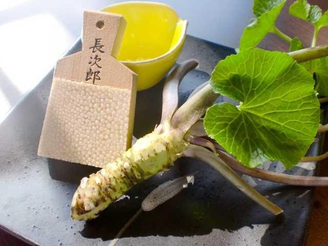 蕎麦茶寮nanakusa