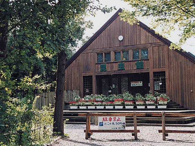 ゆかりの森昆虫館