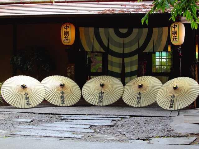 島崎藤村ゆかりの宿 中棚荘(日帰り入浴)