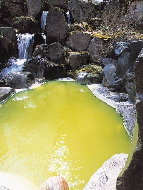 熊の湯ホテル(日帰り入浴)