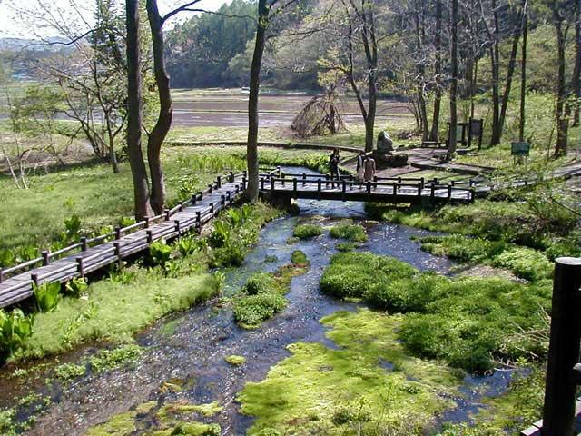姫川源流湧水