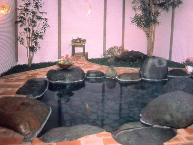クアハウス石橋旅館(日帰り入浴)