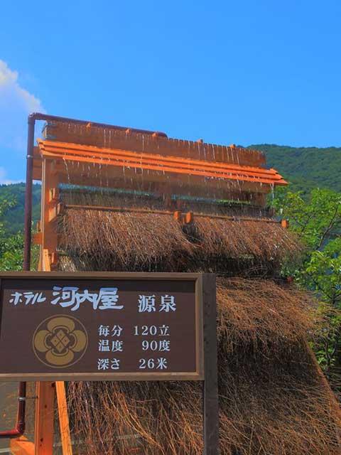 ホテル河内屋(日帰り入浴)