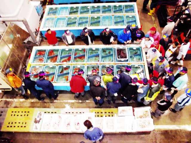 沼津魚市場INO