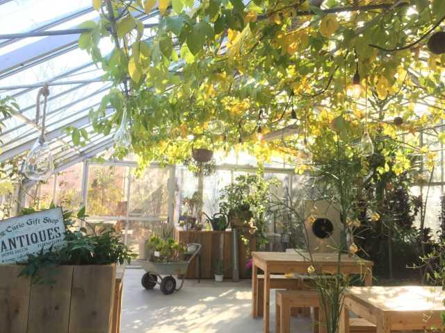名倉メロン農場・Fruit cafe NiJi