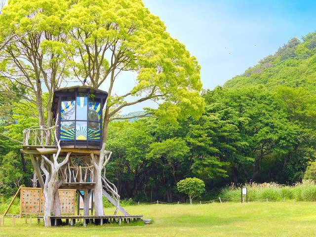 稲取高原ツリーハウス