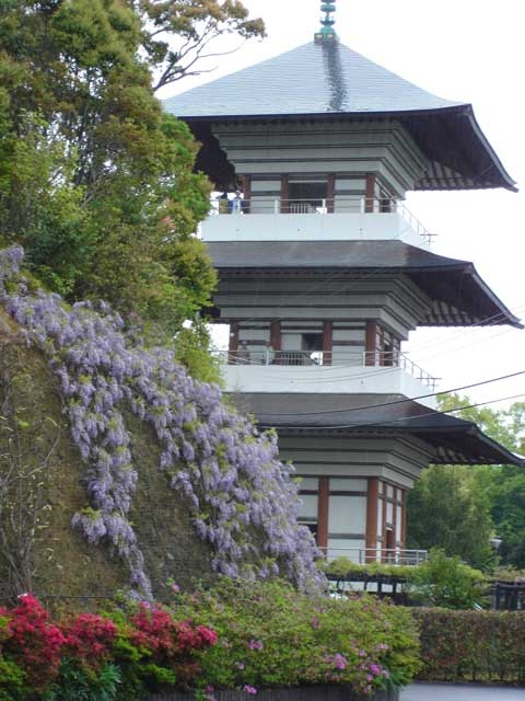 香山寺市民の森
