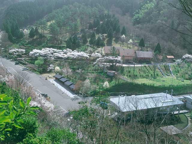 太郎川公園キャンプ場