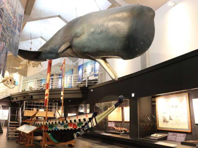 キラメッセ室戸鯨館