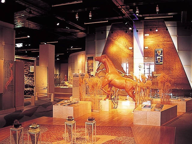 指宿市考古博物館 時遊館COCCOはしむれ