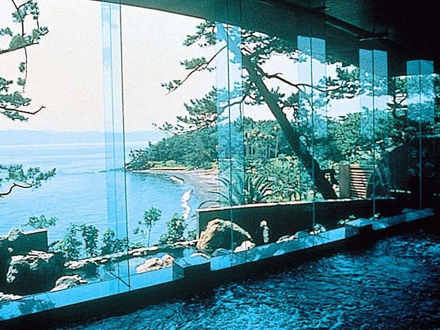 指宿いわさきホテル(日帰り入浴)