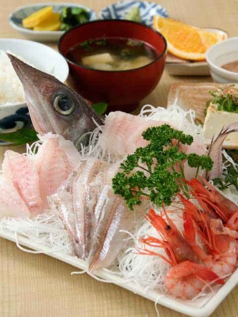 沼津の深海魚