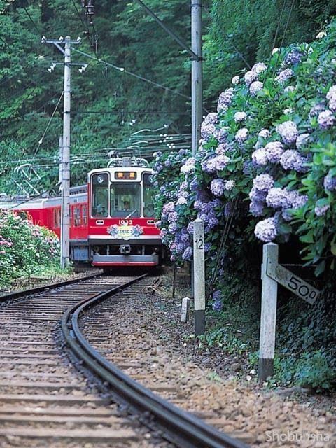 箱根登山電車(箱根登山鉄道)