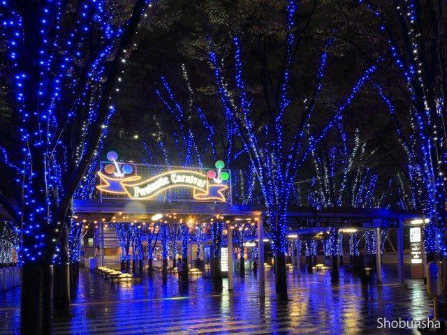 たまアリ△タウンけやきひろばイルミネーション 2019-20 FANTASTIC CARNIVAL【埼玉県】