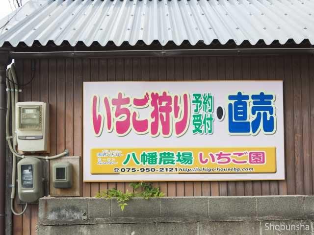 いちごハウス・ブリティッシュガーデン【京都府】