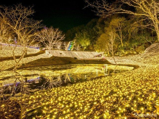 NESTA ILLUMINA ~光のさんぽみち~【兵庫県】