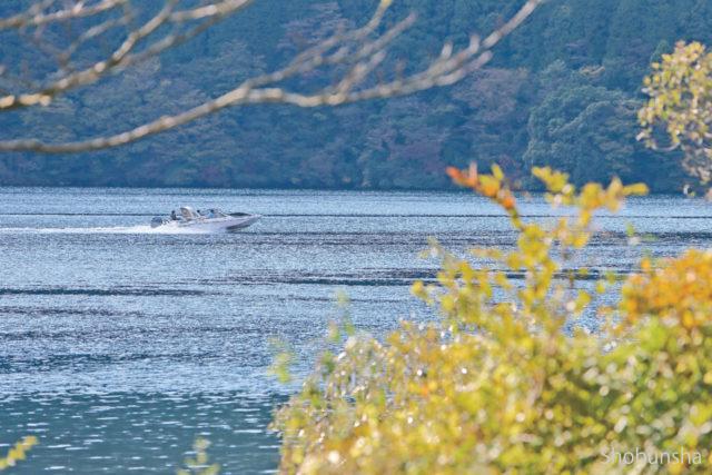 芦ノ湖遊覧とセットで楽しめる