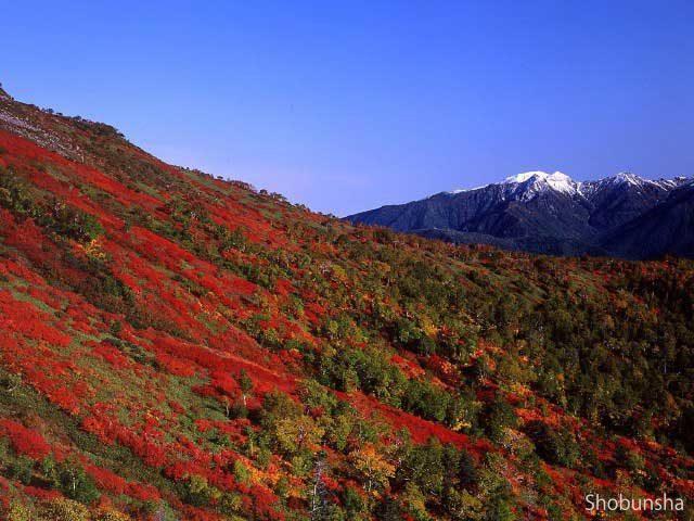 北海道【層雲峡】大雪山の麓で渓谷美を満喫!