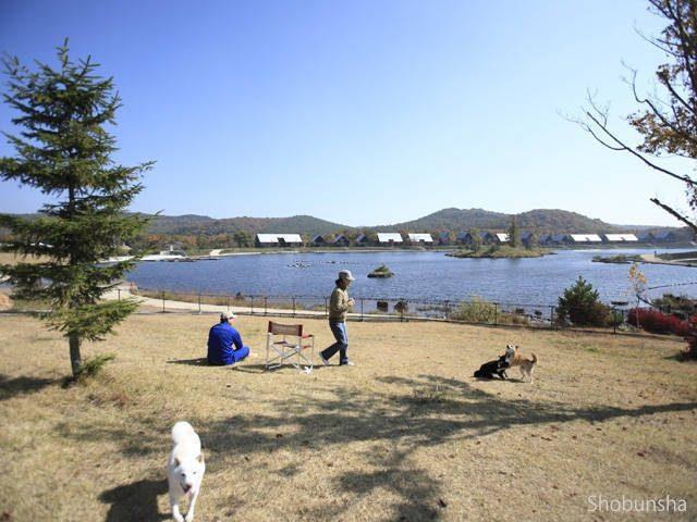 1.ペットもOK!リゾート感覚のキャンプ場 エンゼルフォレスト那須白河(福島県)