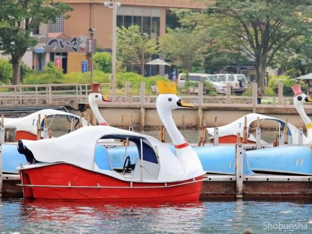2.手こぎボート&スワンボート