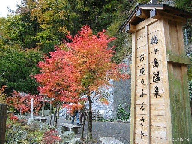 梅ヶ島温泉(ライトアップ)【静岡県】