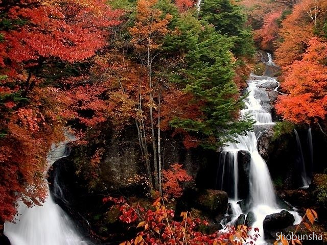 竜頭ノ滝【栃木県】