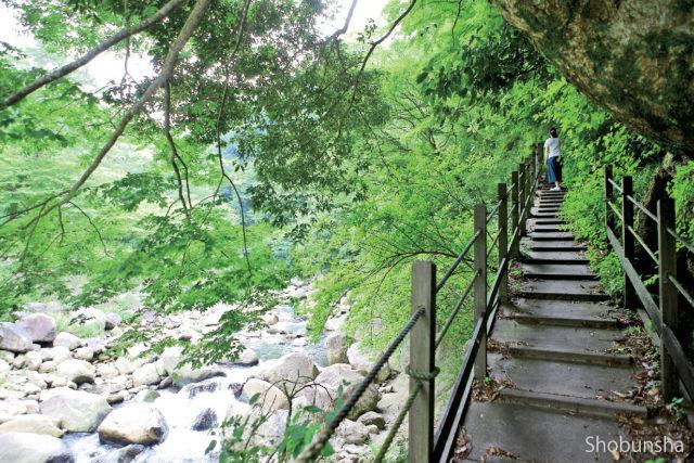 堂ヶ島渓谷遊歩道コース