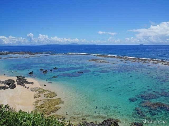 サンゴ礁がきれい 畦プリンスビーチ海浜公園(鹿児島県)